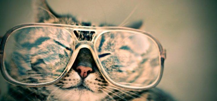 Collecte de lunettes usagées
